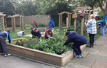 Gardening at Shine
