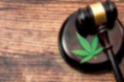 cannabis gavel logo.jpg