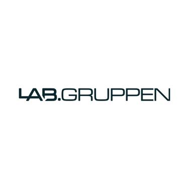 lab_gruppen.png