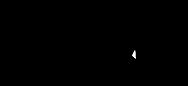 VECTOR Logo .png