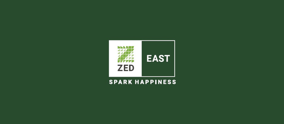 The 5 Types of Property in Zed East New Cairo by Ora Developers