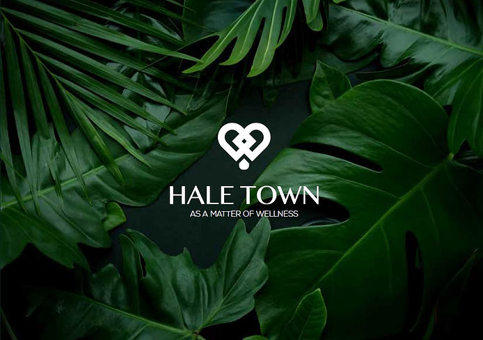 Hale Town Cover image