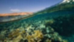 Red Sea Il Monte Galala
