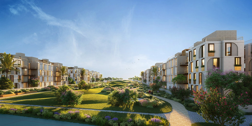 landscae in VYE New Zayed