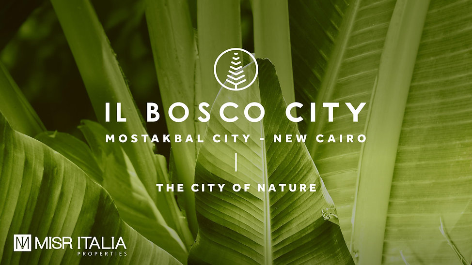 IL Bosco City cover photo