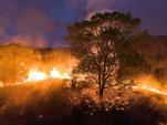 Brasil: reputação em chamas #news1