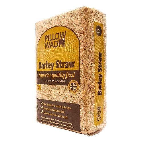 Pillowwad Straw LARGE
