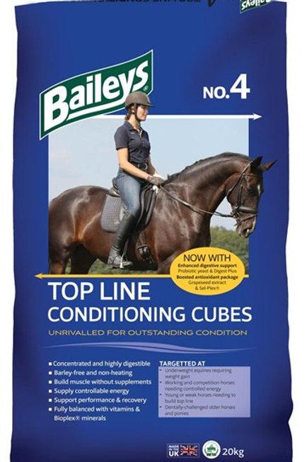 Baileys no4 20kg