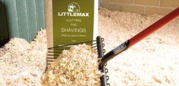littlemax 2.jpg