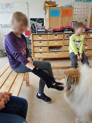 hund 1_blur.jpg