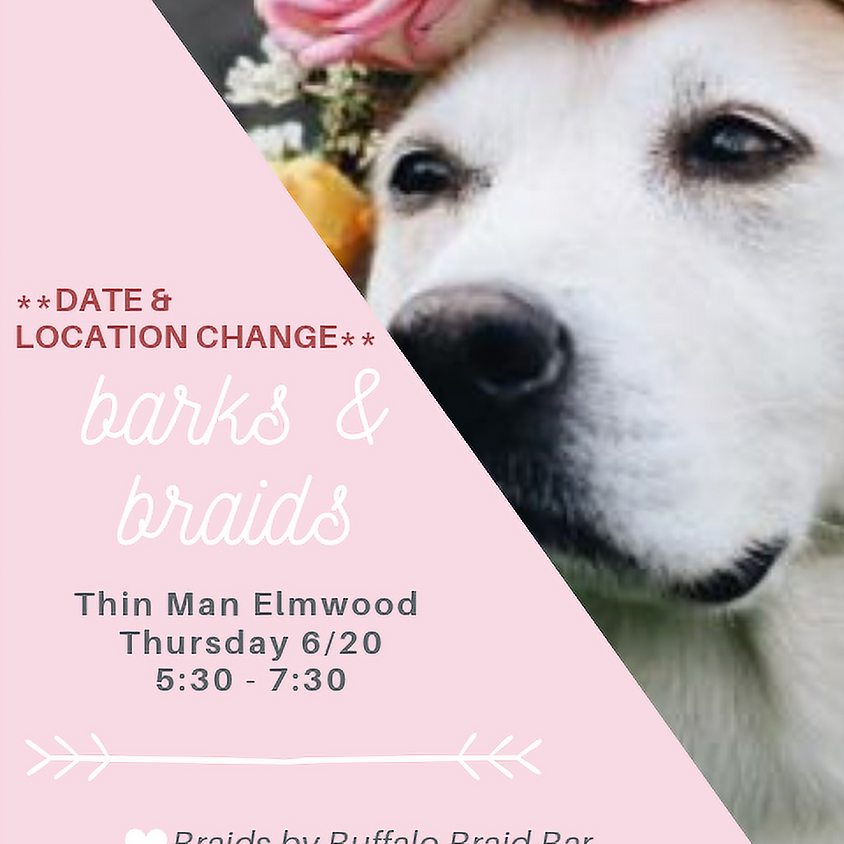 Party - Barks & Braids