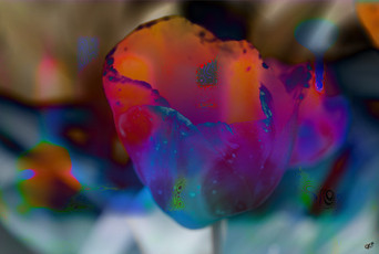 Touch of Flower 01