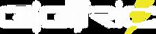 logo%20eletric%20branco_edited.png