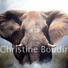 Elephant 2  Peinture de l'artiste Christine Boudin