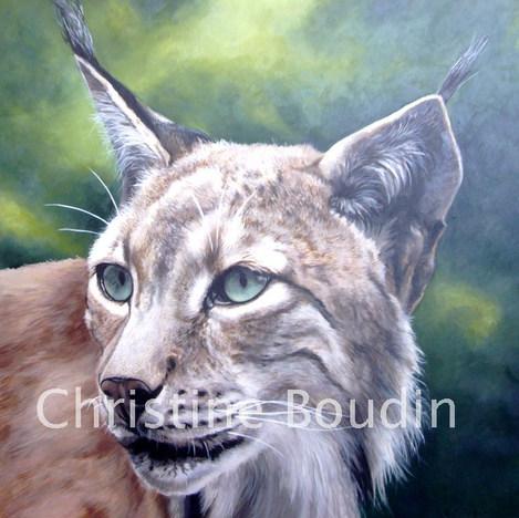 Lynx  Peinture de l'artiste Christine Boudin