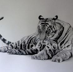 Tigre couché  Peinture de l'artiste Christine Boudin
