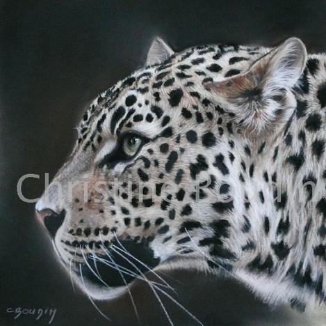 léopard profil Peinture de Christine Boudin