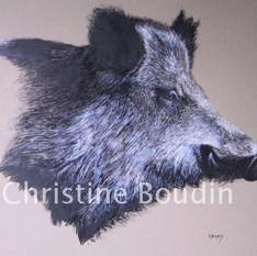 Portrait sanglier  Peinture de l'artiste Christine Boudin