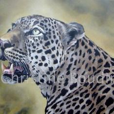 léopard 14  Peinture de l'artiste Christine Boudin