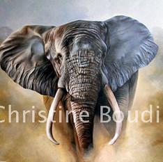 Elephant 1  Peinture de l'artiste Christine Boudin