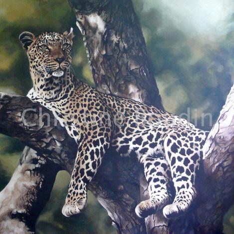 leopard  arbre  2  Peinture de l'artiste Christine Boudin
