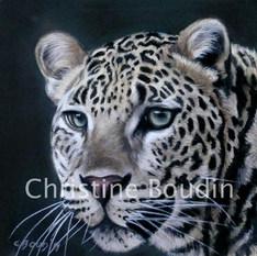 Léopard pastel  Peinture de l'artiste Christine Boudin