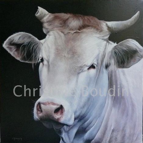 Charolaise  Peinture de l'artiste Christine Boudin