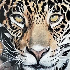 Portrait léopard  Peinture de l'artiste Christine Boudin