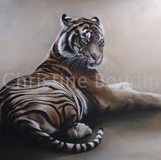 Tigre couché 10  Peinture de l'artiste Christine Boudin