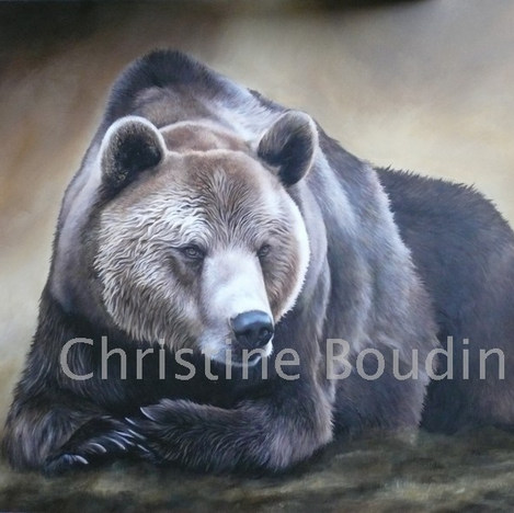 Ours brun  Peinture de l'artiste Christine Boudin