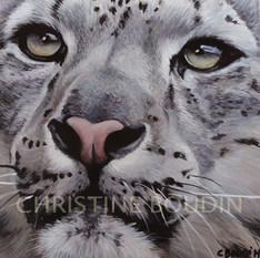Portait panthère  Peinture de l'artiste Christine Boudin