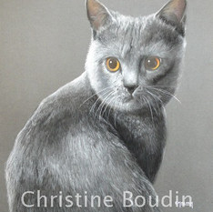 Chartreux  Peinture de l'artiste Christine Boudin