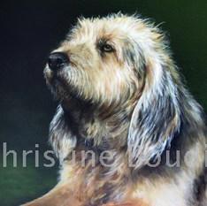Griffon  Peinture de l'artiste Christine Boudin