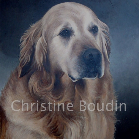 Golden Retriever  Peinture de l'artiste Christine Boudin