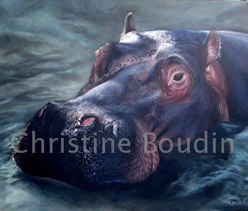 Hippopotame  Peinture de l'artiste Christine Boudin