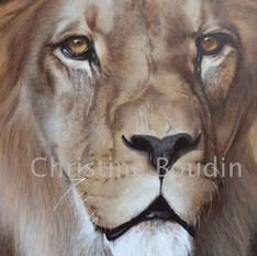 Lion 2  Peinture de l'artiste Christine Boudin