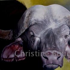 Buffle 3  Peinture de l'artiste Christine Boudin