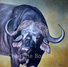 Buffle  Peinture de l'artiste Christine Boudin