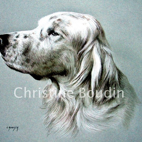 Setter  Peinture de l'artiste Christine Boudin