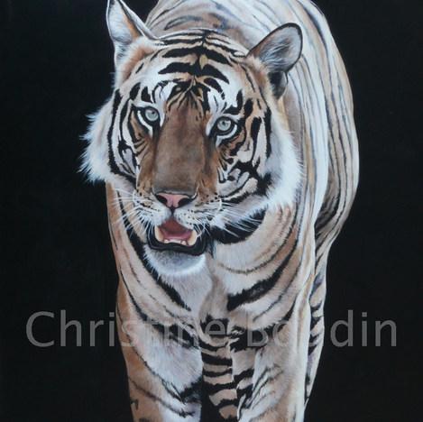 Tigre 5  Peinture de l'artiste Christine Boudin