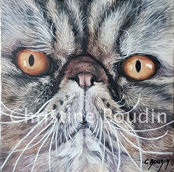 Persan  Peinture de l'artiste Christine Boudin