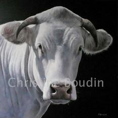 Charolaise par Christine Boudin