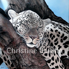 Sieste  Peinture de l'artiste Christine Boudin