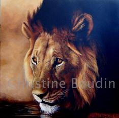 lion1  Peinture de l'artiste Christine Boudin