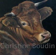 Vache Salers  Peinture de l'artiste Christine Boudin