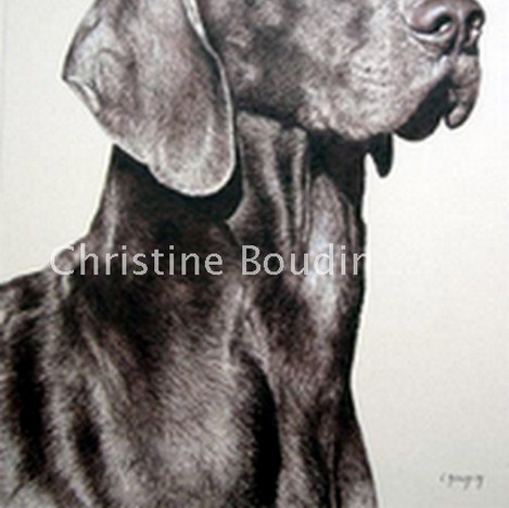 BRAQUE  Peinture de l'artiste Christine Boudin