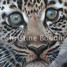 Bébé léopard  Peinture de l'artiste Christine Boudin
