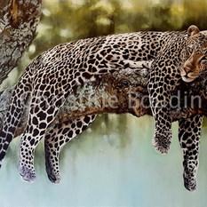 léopard arbre 16  Peinture de l'artiste Christine Boudin