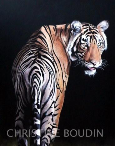 tigre 3  Peinture de l'artiste Christine Boudin