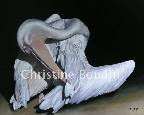 Pelican 1  Peinture de l'artiste Christine Boudin